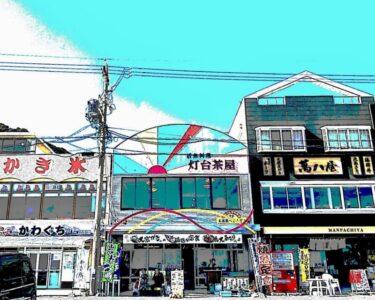 春の伊良湖岬を往く!市場食堂〜灯台茶屋