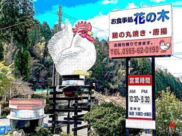 皮パリパリ!肉汁ジューシー!鶏(とり)一羽丸ごと食べられる⁈花の木|豊田市