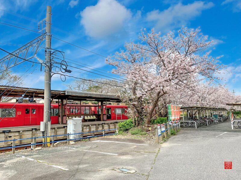 西浦駅桜と600系